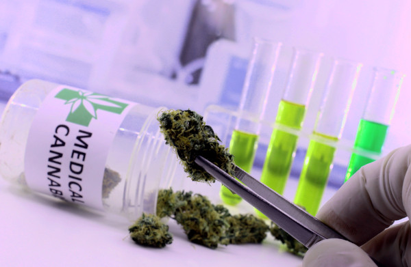 endotext cannabinoid research medical marijuana